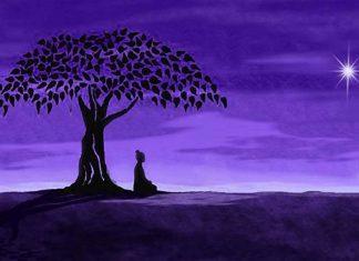 Enlightened under the tree