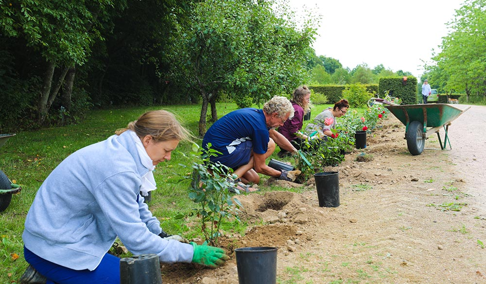 Planting Sri Vast Center Sweden