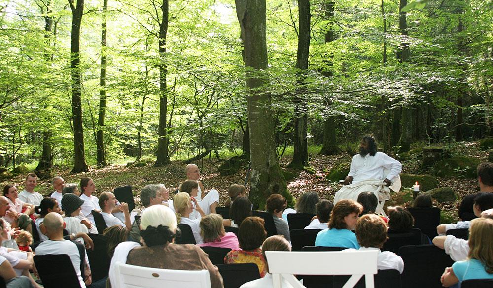 International-Retreat-spontanious-gathering-in-forest