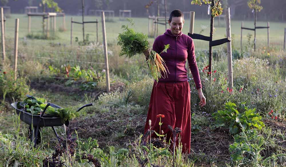 divinya-permaculture-garden