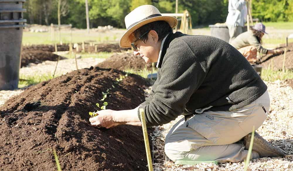 permaculture-farming-in-divinya